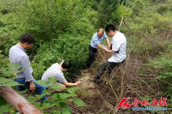 市城乡建设局副局长陈启波督查店埠河(资料图)